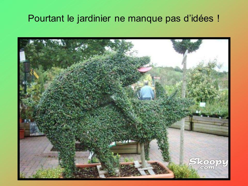 Pourtant le jardinier ne manque pas d'idées !