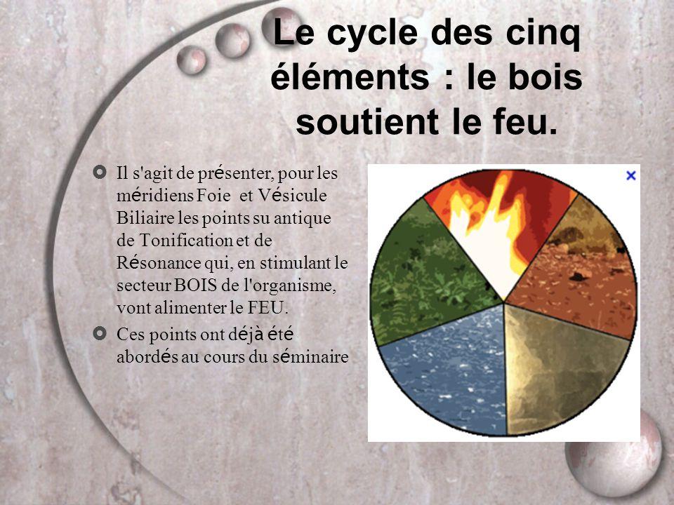 Le cycle des cinq éléments : le bois soutient le feu.