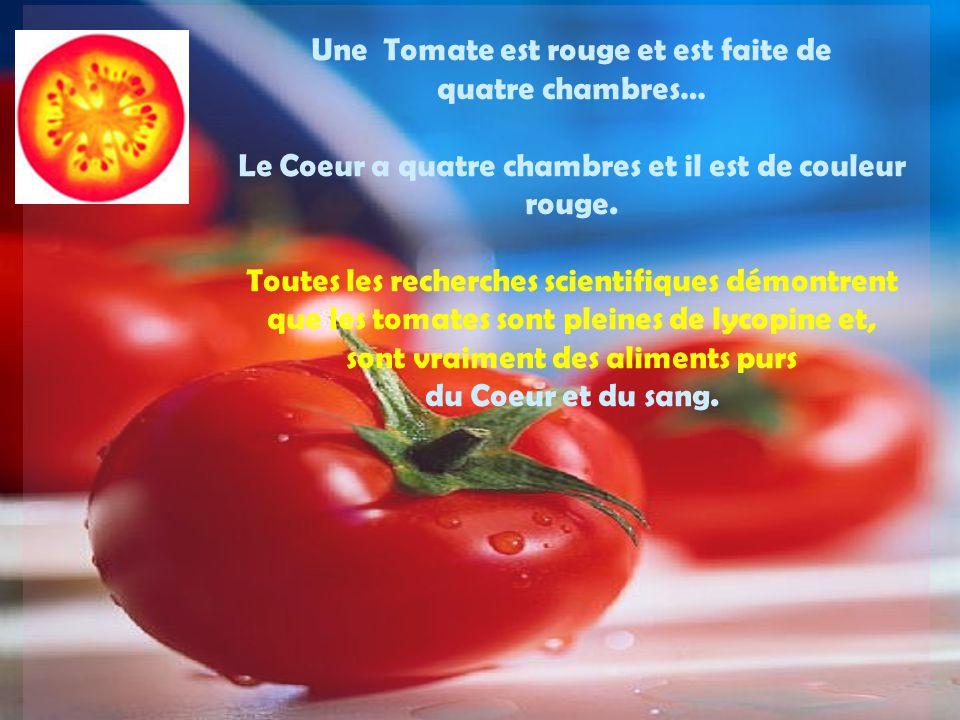 Une Tomate est rouge et est faite de quatre chambres…