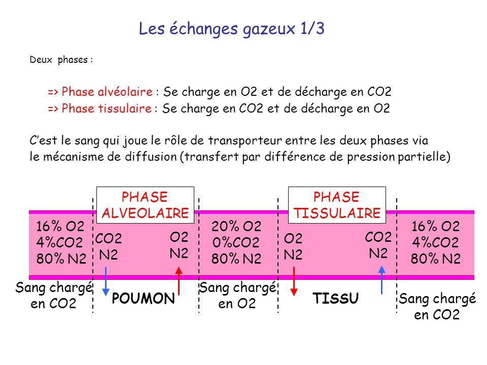 => Phase alvéolaire : Se charge en O2 et de décharge en CO2
