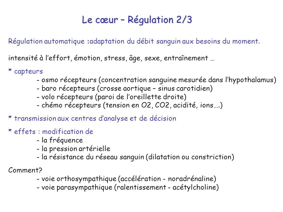 Le cœur – Régulation 2/3 Régulation automatique :adaptation du débit sanguin aux besoins du moment.