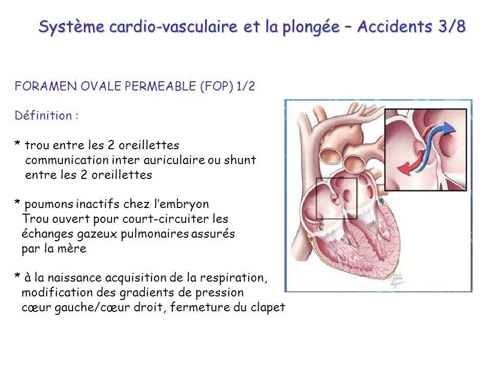 Système cardio-vasculaire et la plongée – Accidents 3/8