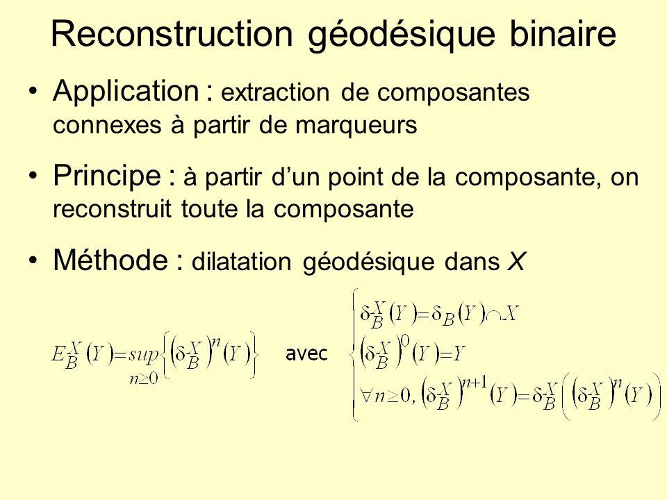 Reconstruction géodésique binaire