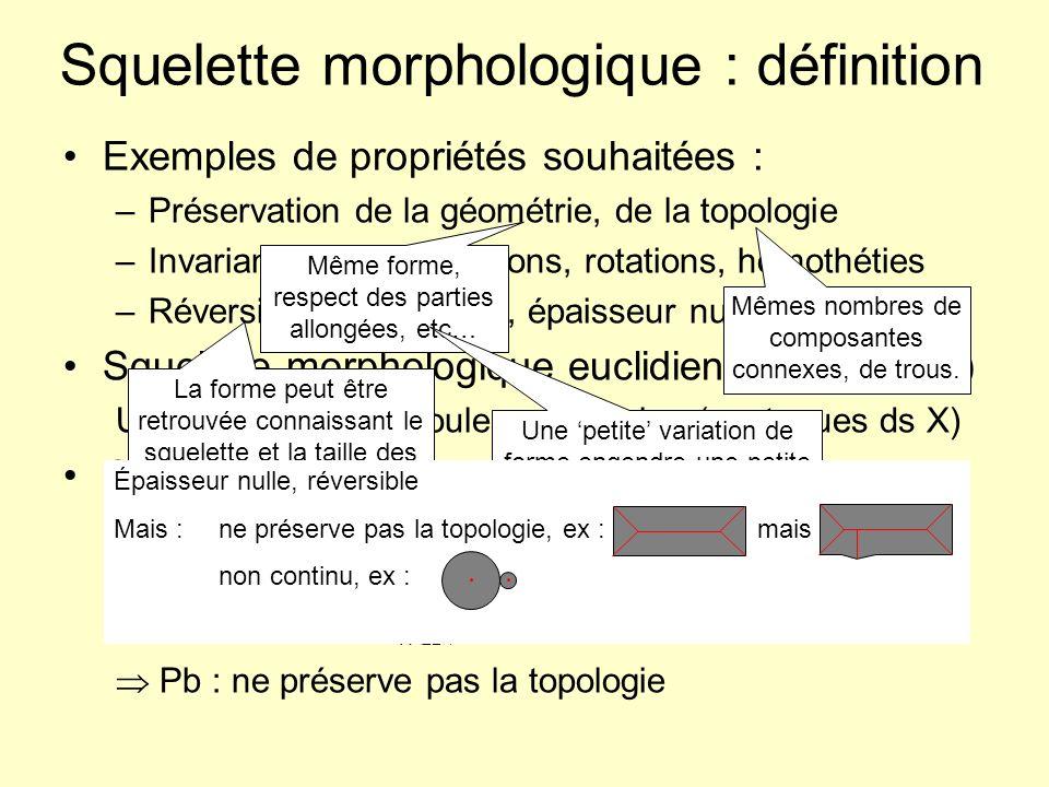 Squelette morphologique : définition