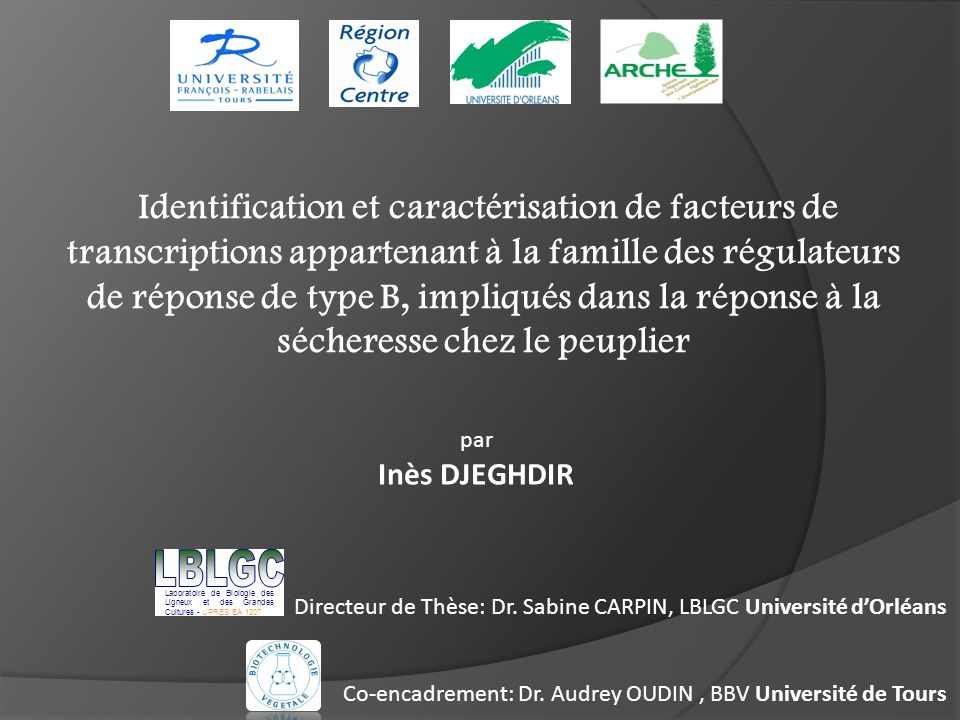 Identification et caractérisation de facteurs de transcriptions appartenant à la famille des régulateurs de réponse de type B, impliqués dans la réponse à la sécheresse chez le peuplier