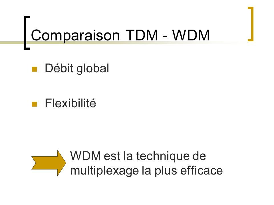Comparaison TDM - WDM Débit global Flexibilité