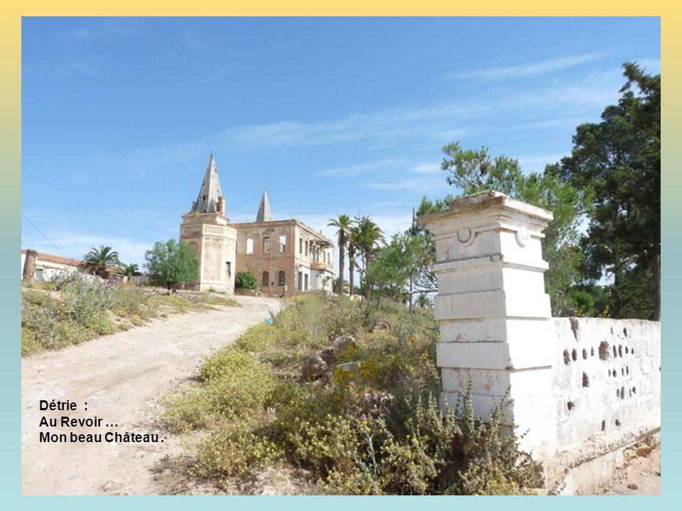 Détrie : Au Revoir … Mon beau Château .