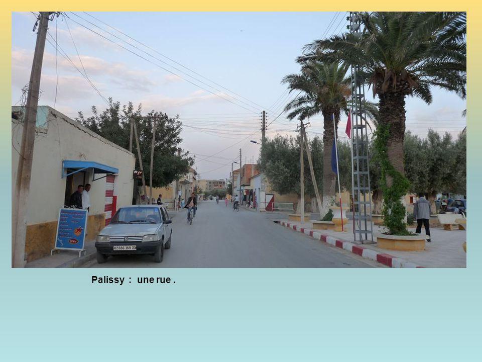 Palissy : une rue .
