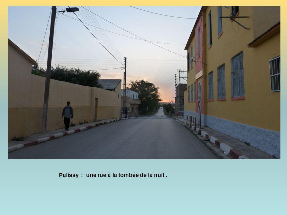 Palissy : une rue à la tombée de la nuit .
