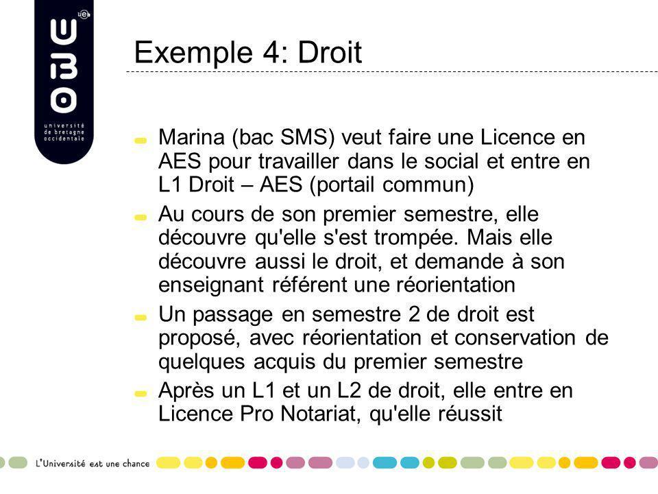 Exemple 4: Droit Marina (bac SMS) veut faire une Licence en AES pour travailler dans le social et entre en L1 Droit – AES (portail commun)