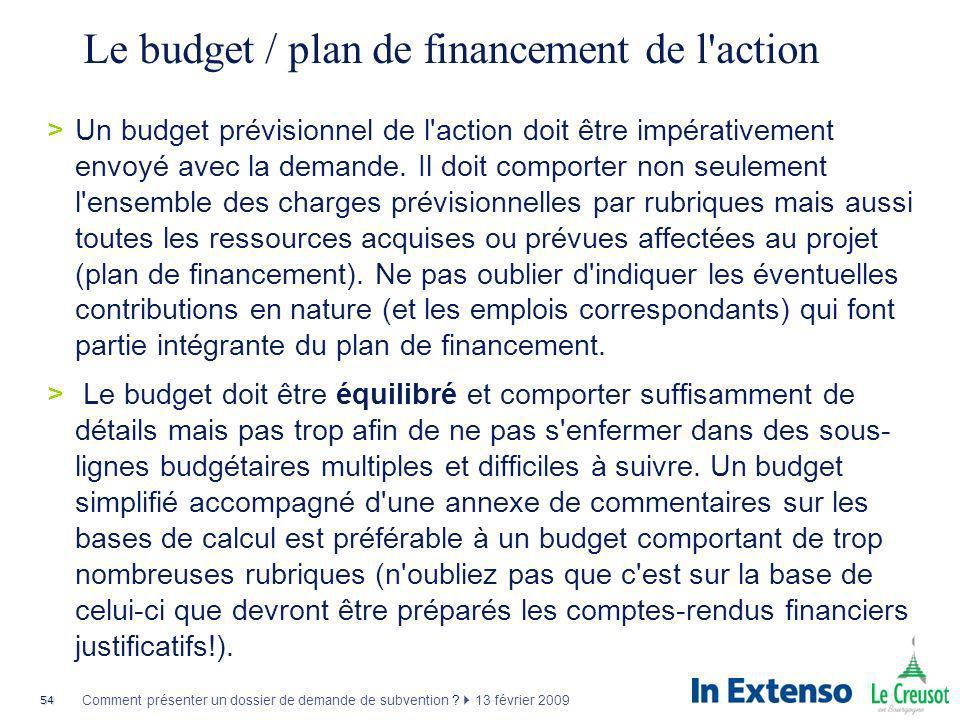 Le budget / plan de financement de l action