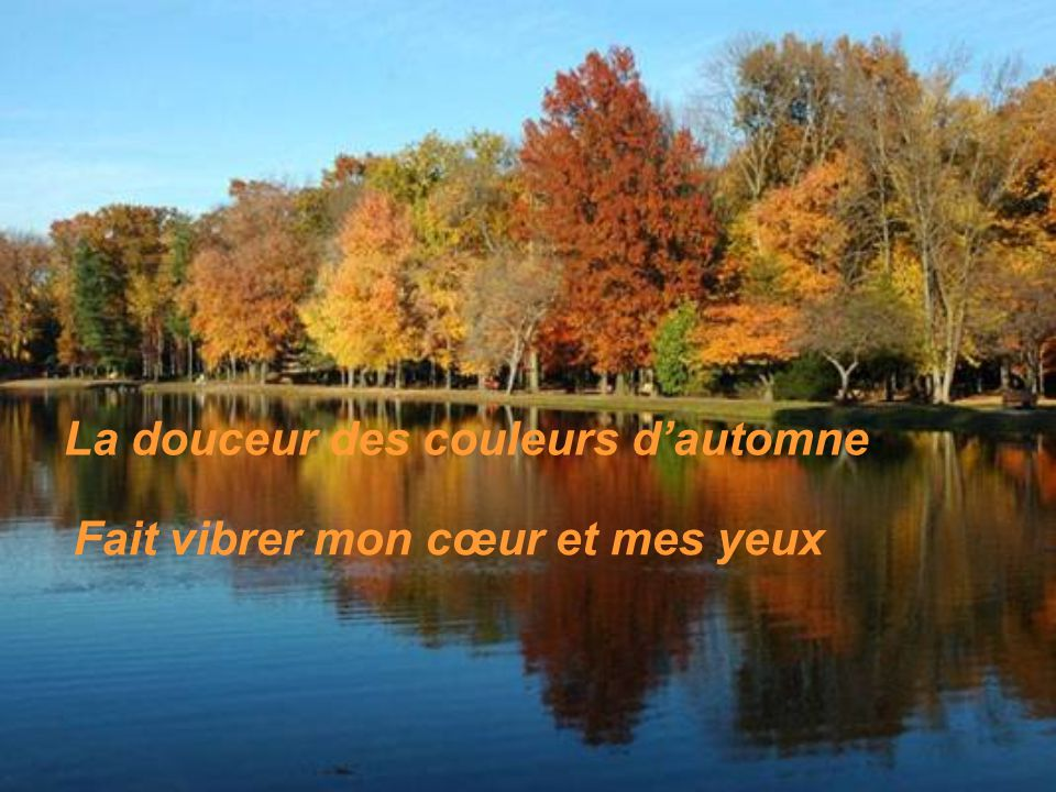 La douceur des couleurs d'automne