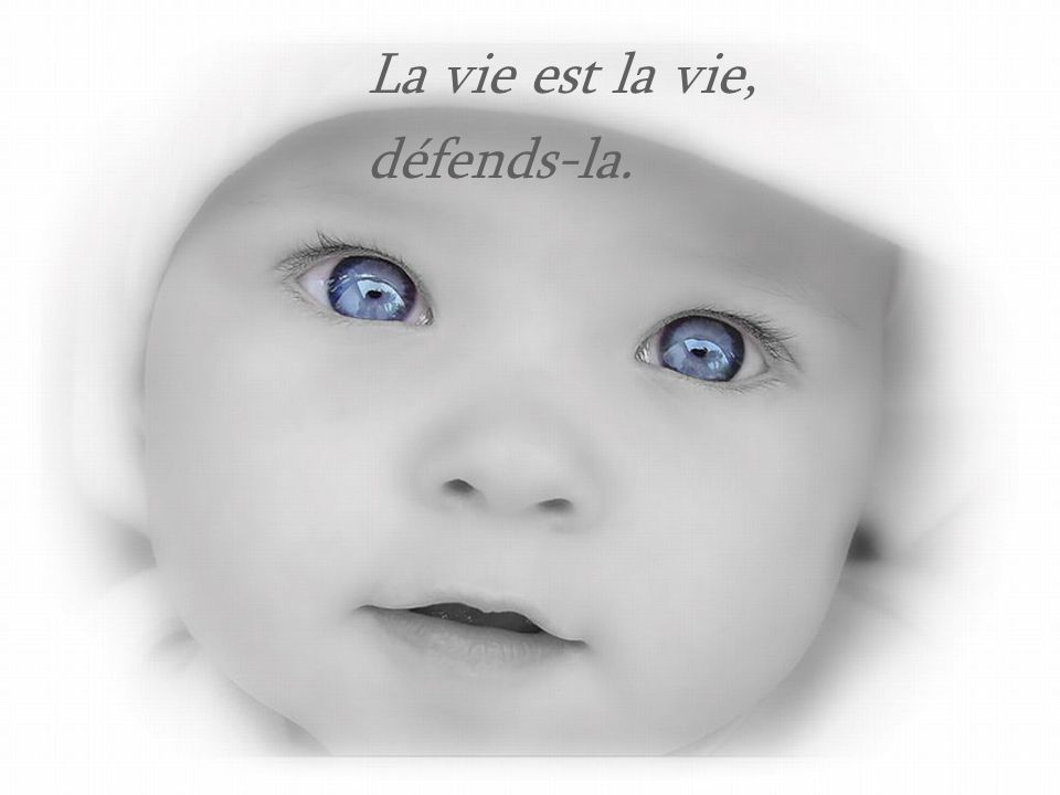 La vie est la vie, défends-la.