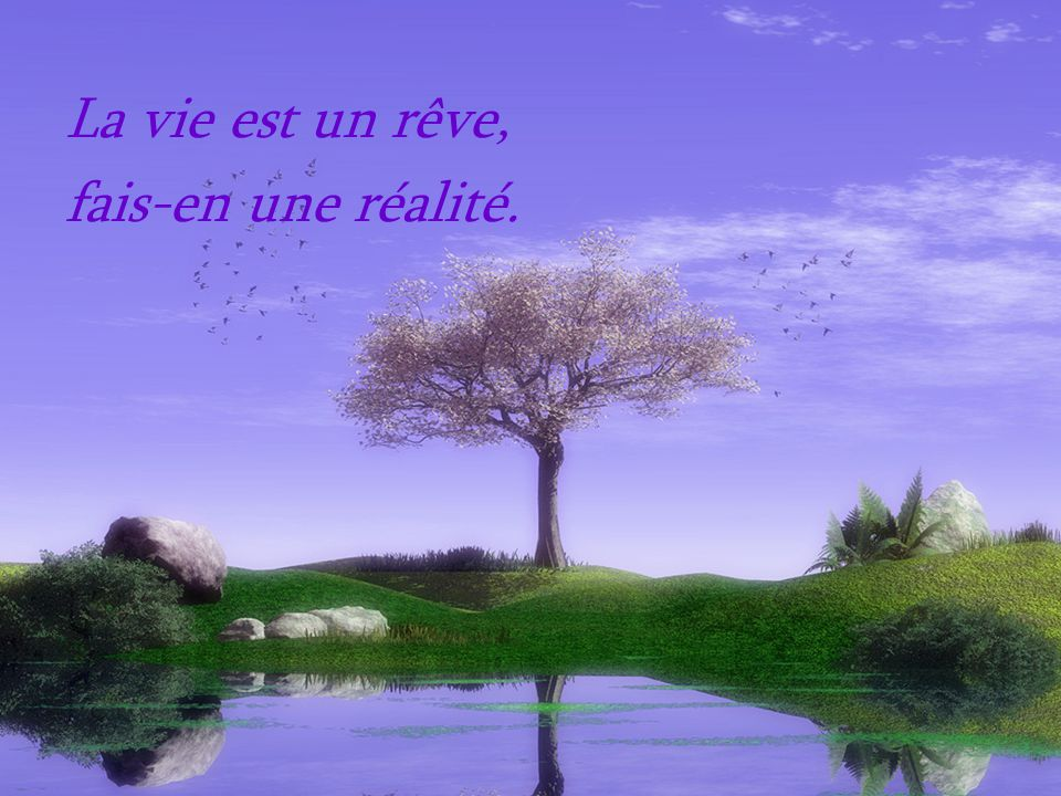 La vie est un rêve, fais-en une réalité.