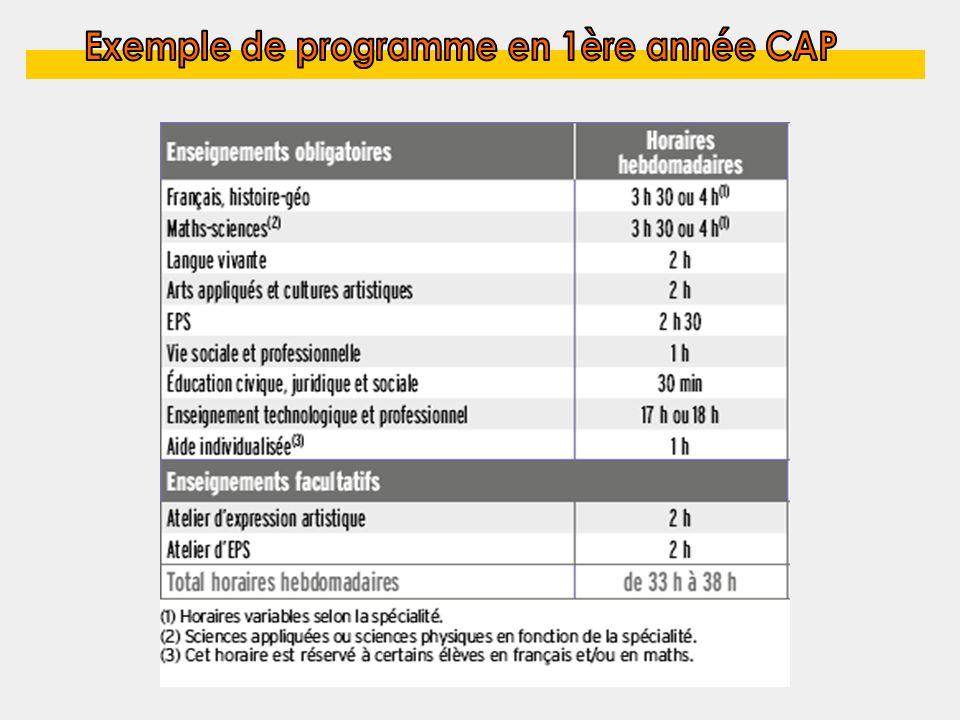Exemple de programme en 1ère année CAP