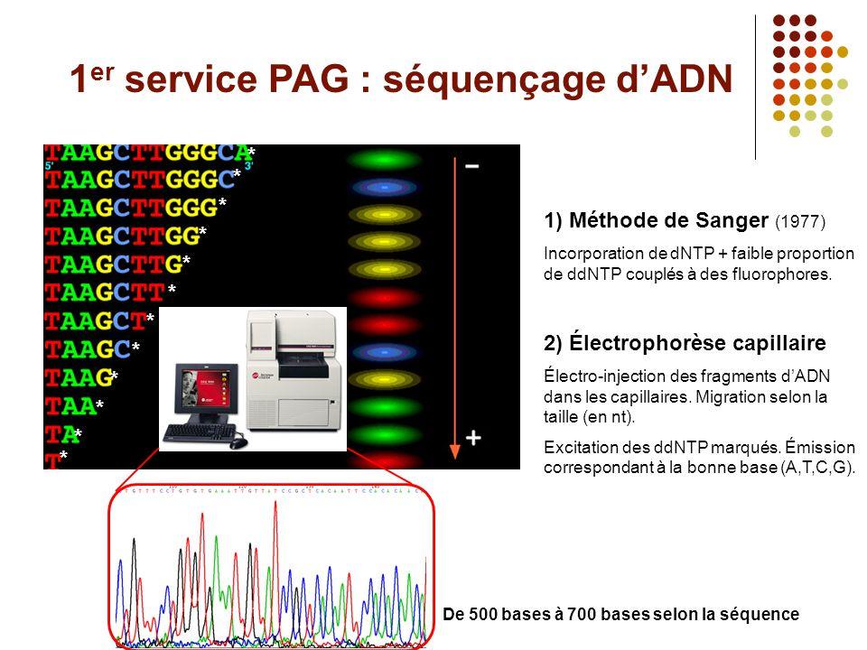 1er service PAG : séquençage d'ADN