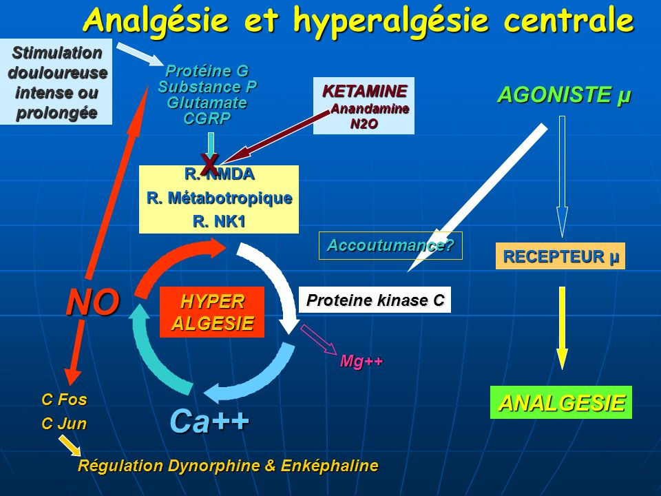 Analgésie et hyperalgésie centrale