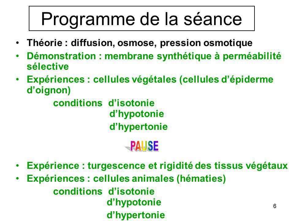 Programme de la séance Théorie : diffusion, osmose, pression osmotique