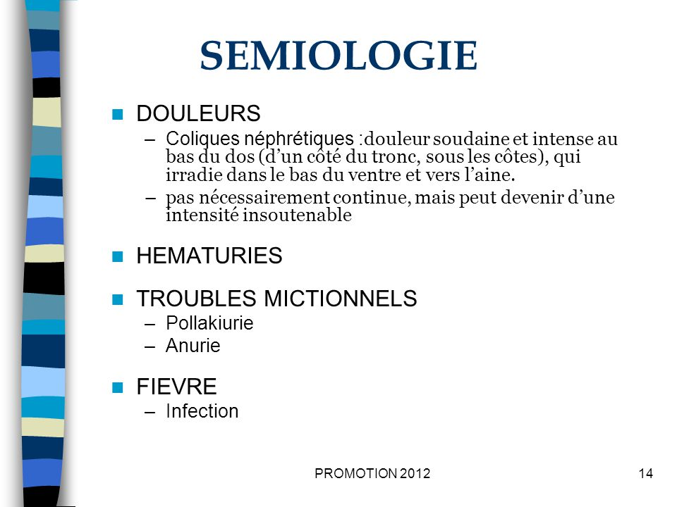 SEMIOLOGIE DOULEURS HEMATURIES TROUBLES MICTIONNELS FIEVRE