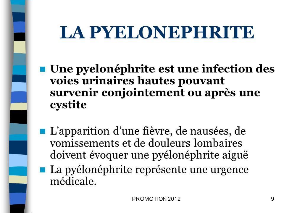 LA PYELONEPHRITE Une pyelonéphrite est une infection des voies urinaires hautes pouvant survenir conjointement ou après une cystite.