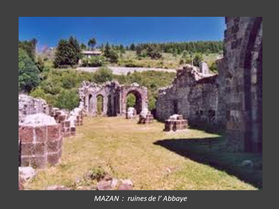MAZAN : ruines de l' Abbaye