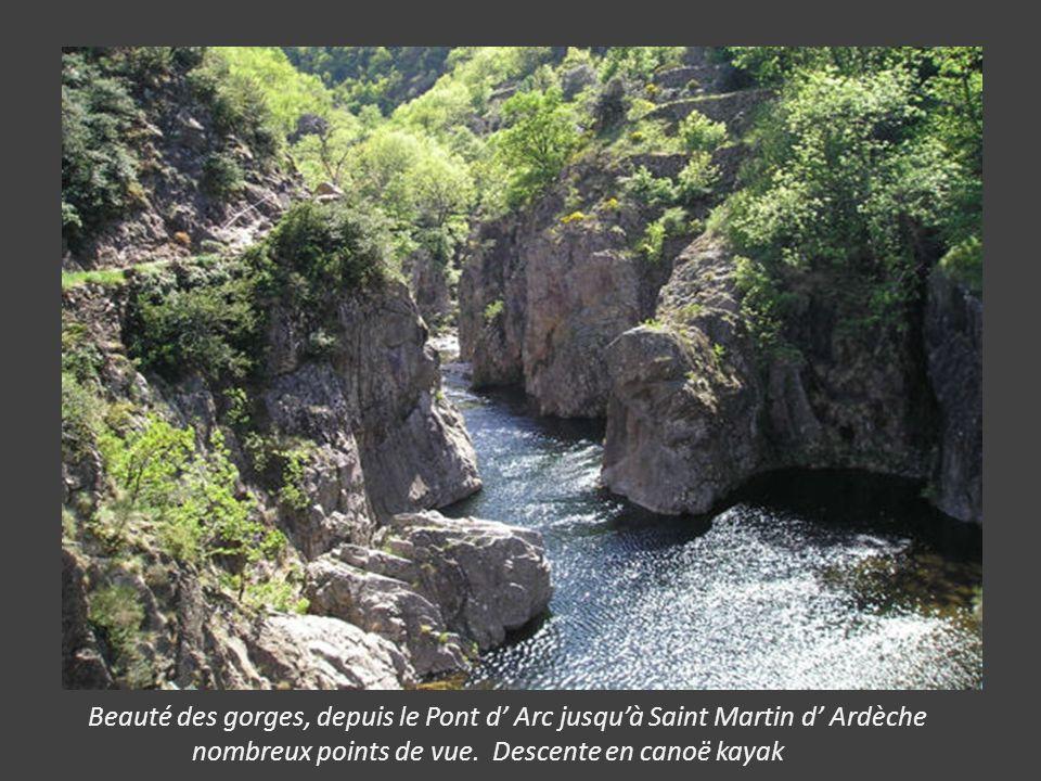 Beauté des gorges, depuis le Pont d' Arc jusqu'à Saint Martin d' Ardèche
