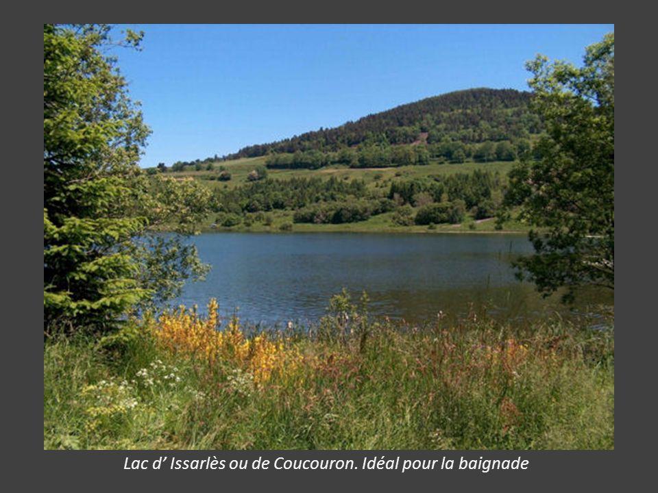 Lac d' Issarlès ou de Coucouron. Idéal pour la baignade