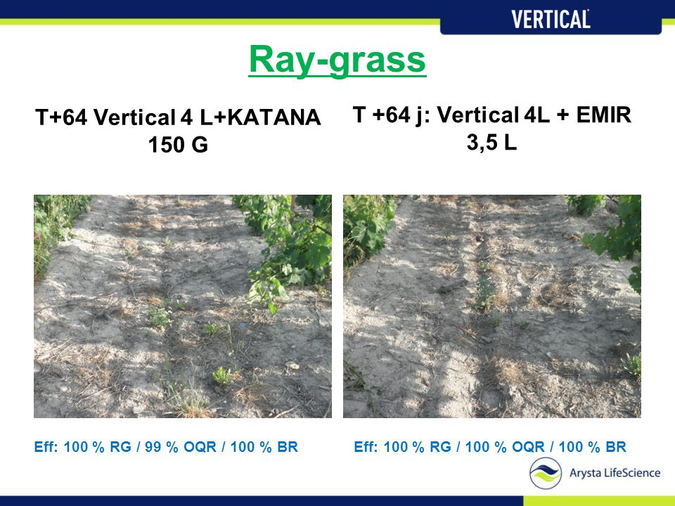 Ray-grass T +64 j: Vertical 4L + EMIR 3,5 L