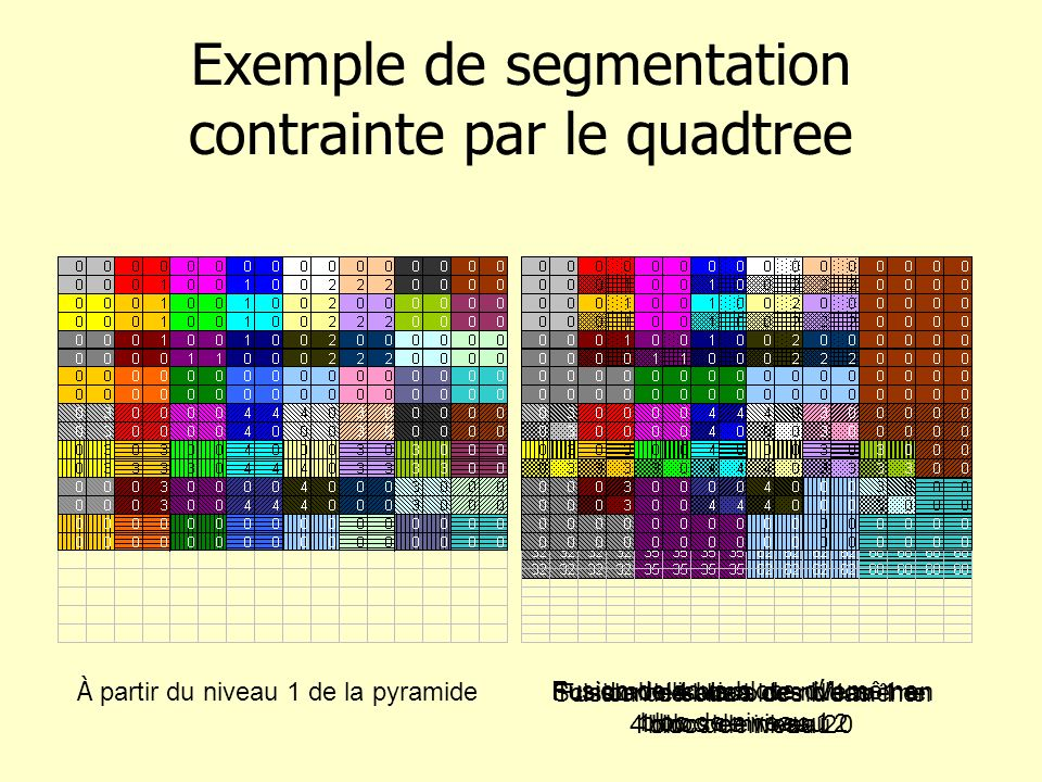 Exemple de segmentation contrainte par le quadtree