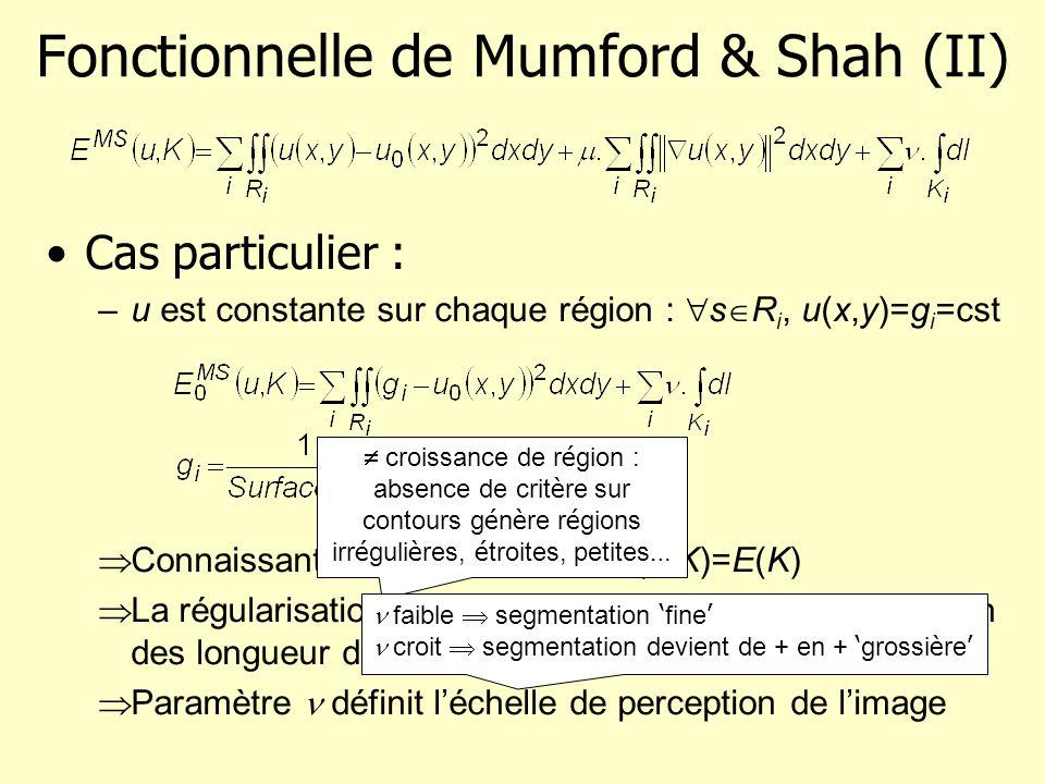 Fonctionnelle de Mumford & Shah (II)