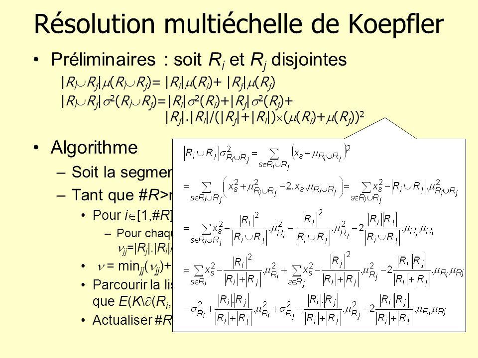 Résolution multiéchelle de Koepfler
