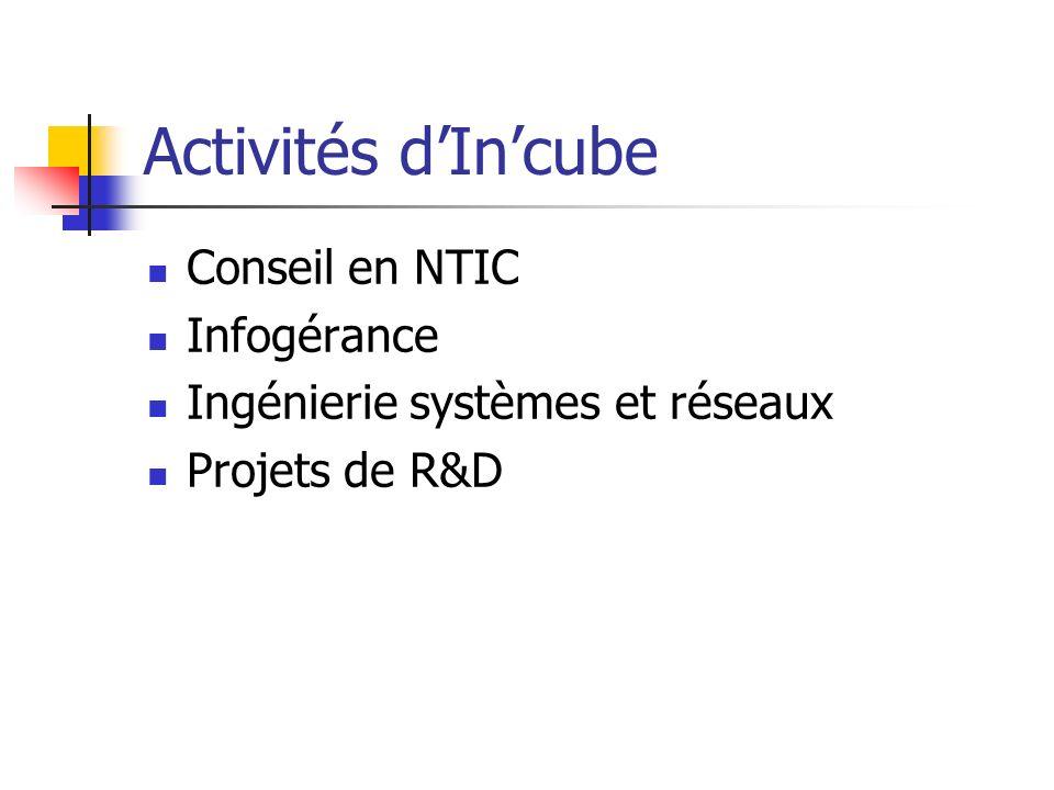 Activités d'In'cube Conseil en NTIC Infogérance