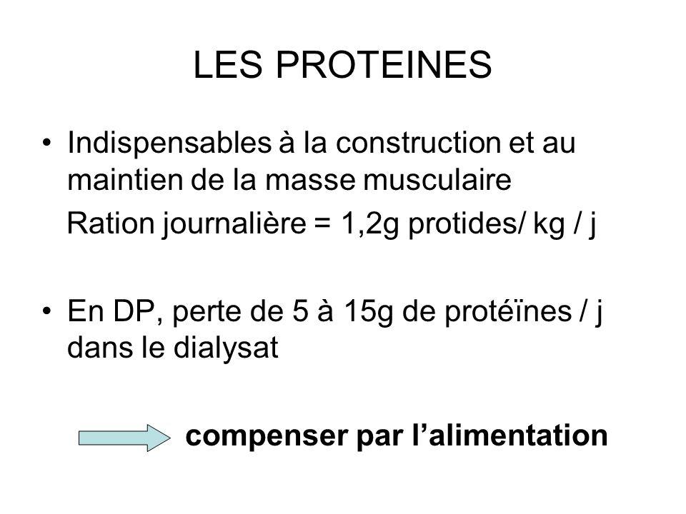 LES PROTEINES Indispensables à la construction et au maintien de la masse musculaire. Ration journalière = 1,2g protides/ kg / j.