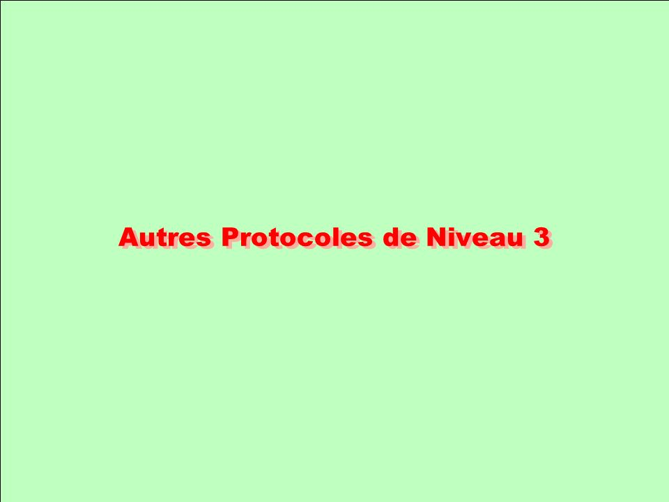 Autres Protocoles de Niveau 3