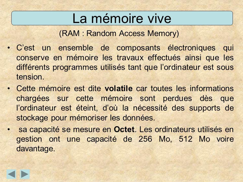 (RAM : Random Access Memory)