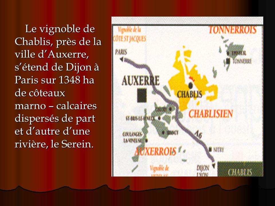 Le vignoble de Chablis, près de la. ville d'Auxerre, s'étend de Dijon à. Paris sur 1348 ha. de côteaux.