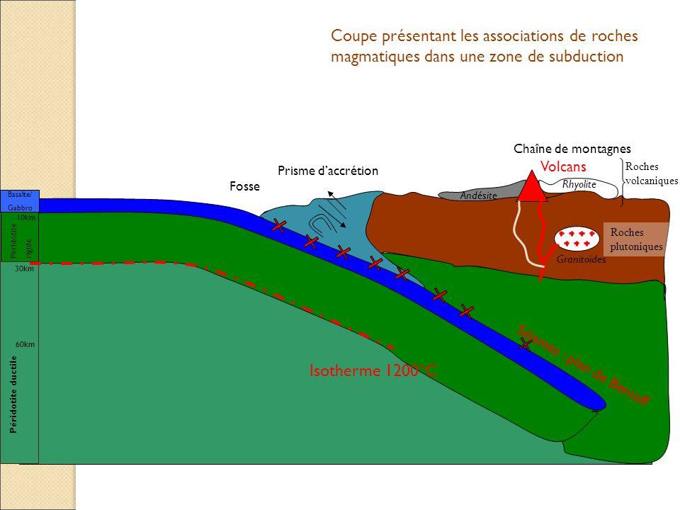 Coupe présentant les associations de roches magmatiques dans une zone de subduction