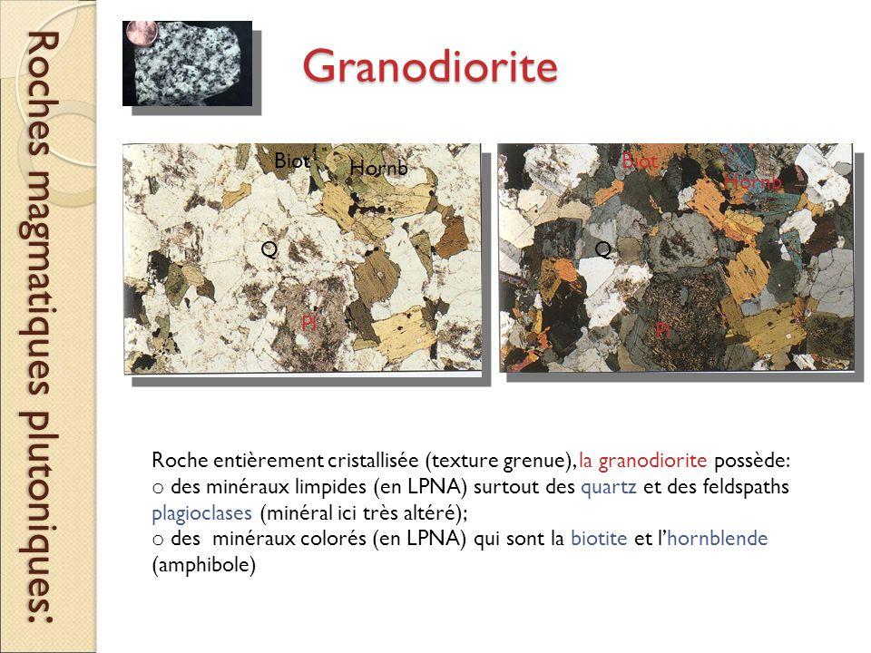 Roches magmatiques plutoniques: