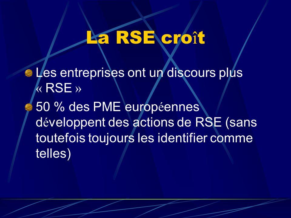La RSE croît Les entreprises ont un discours plus « RSE »