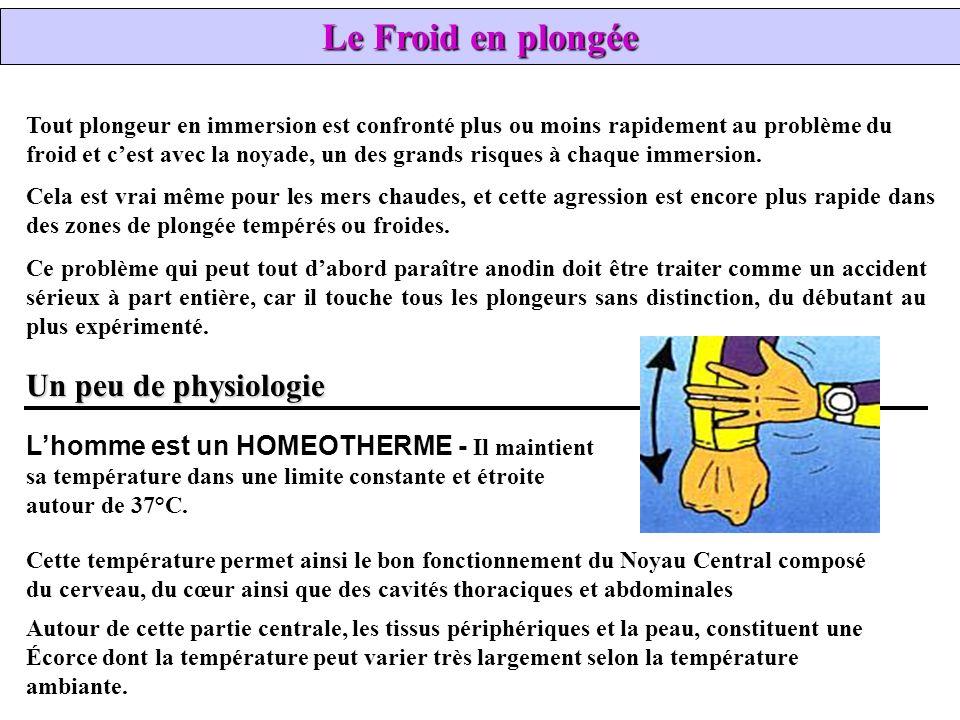Le Froid en plongée Un peu de physiologie