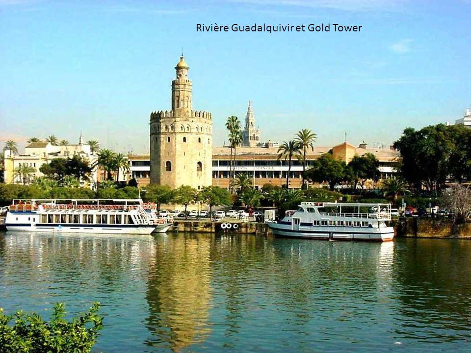 Rivière Guadalquivir et Gold Tower