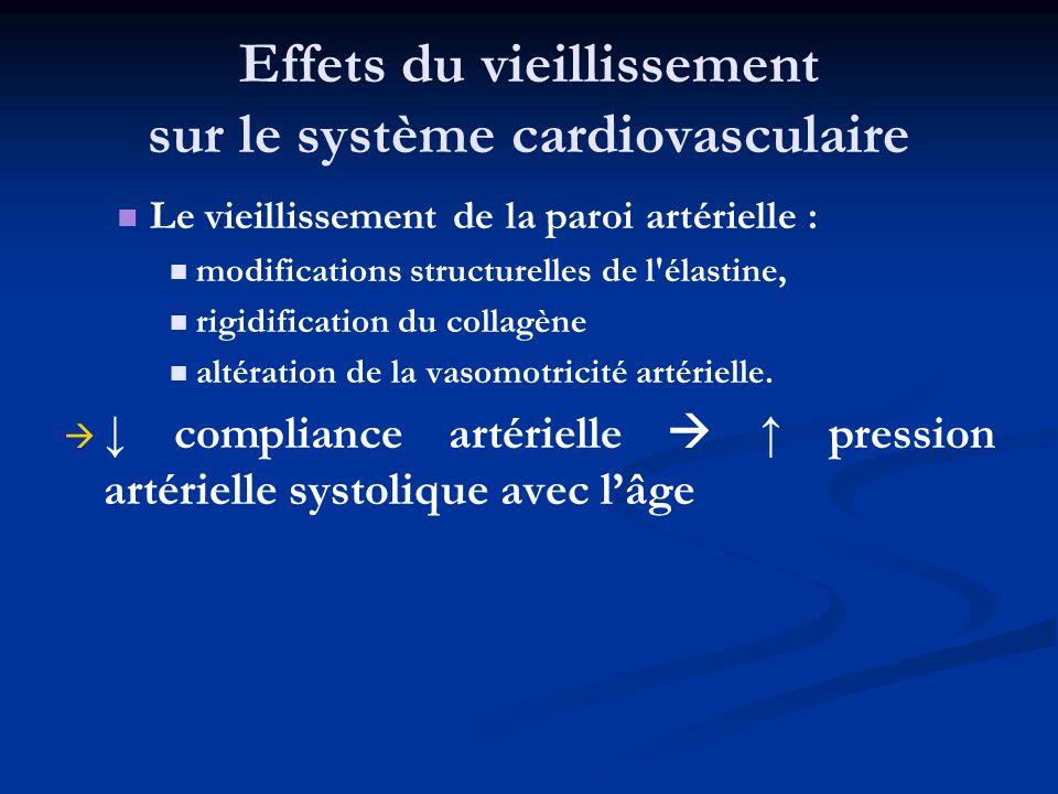 Effets du vieillissement sur le système cardiovasculaire