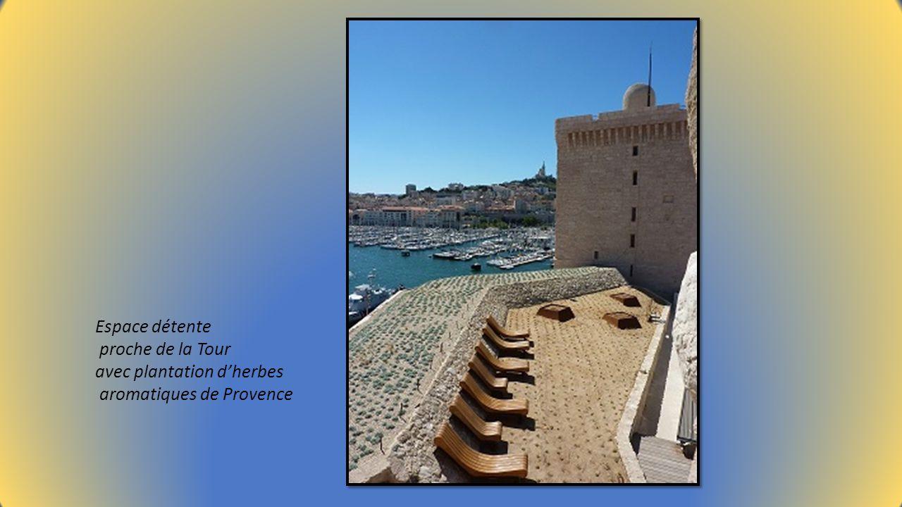 Espace détente proche de la Tour avec plantation d'herbes aromatiques de Provence