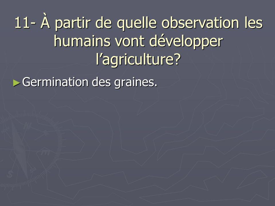 11- À partir de quelle observation les humains vont développer l'agriculture