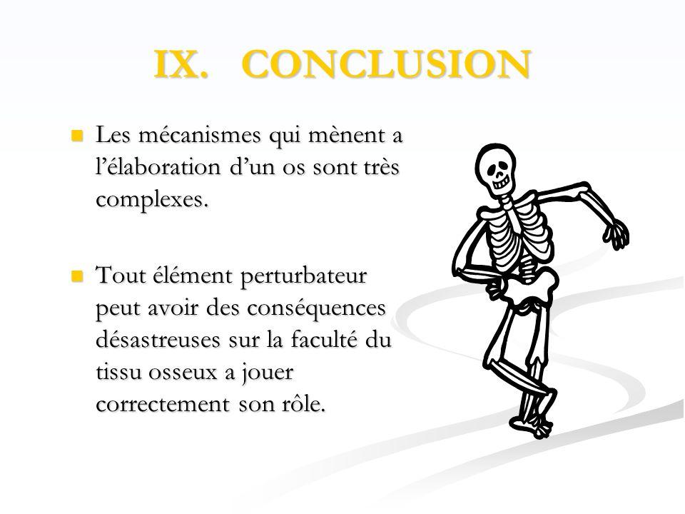 IX. CONCLUSION Les mécanismes qui mènent a l'élaboration d'un os sont très complexes.
