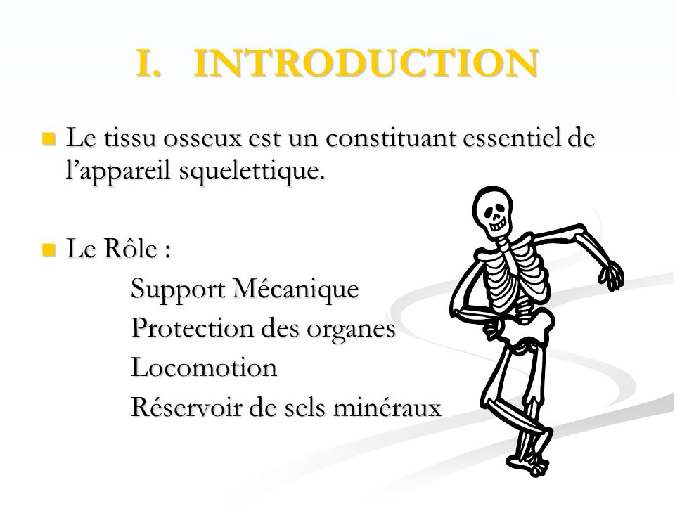 I. INTRODUCTION Le tissu osseux est un constituant essentiel de l'appareil squelettique. Le Rôle :