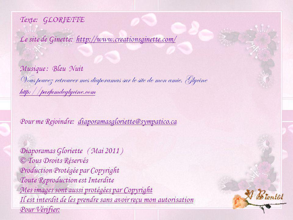 Vous pouvez retrouver mes diaporamas sur le site de mon amie, Glycine