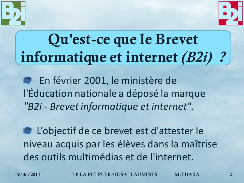 Qu est-ce que le Brevet informatique et internet (B2i)