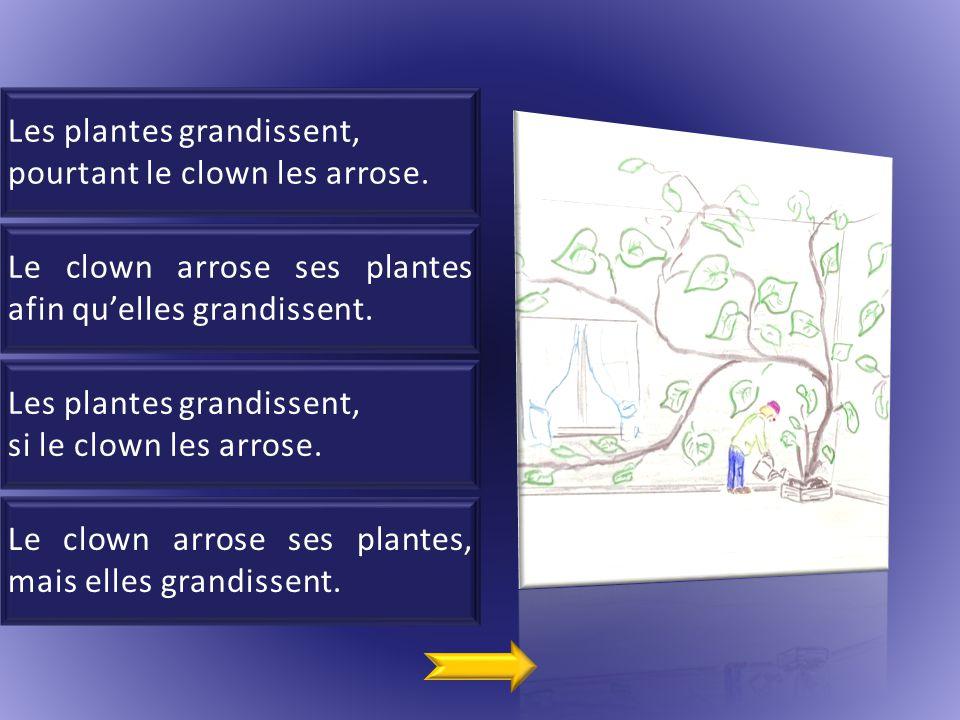 2 Les plantes grandissent, pourtant le clown les arrose.