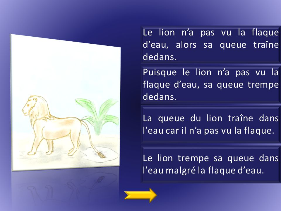 Le lion n'a pas vu la flaque d'eau, alors sa queue traîne dedans.